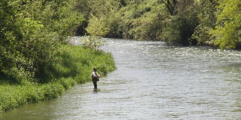 Pêcher...